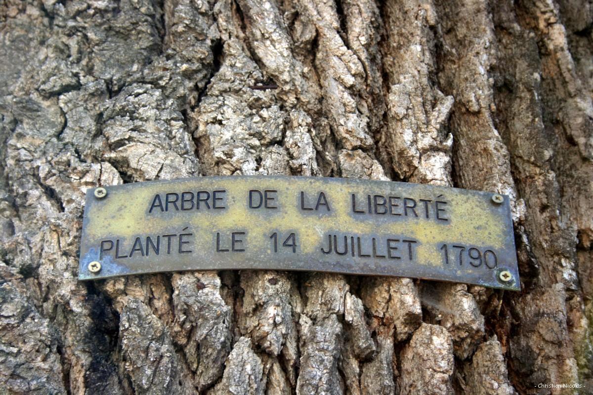 Gezi Parkı ve Marx'ın Özgürlük Ağacı: L'Arbre de la Liberté