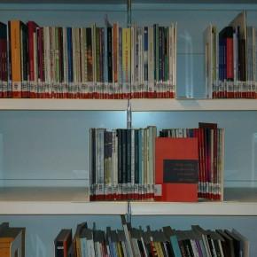 """Kütüphanede 90'lardan gelen bir sürpriz: """"Gereksinimler, Elde Edemeyişler ve İlerlemeler""""."""